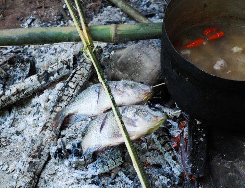 Koken in 't wild in Noord-Laos: geroosterde vis, bosgroentesoep en rotan