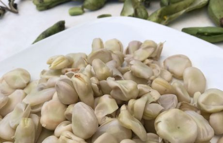 Treurige tuinbonen - Soepiemonster